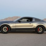 Shelby-ss-Mustang (3)
