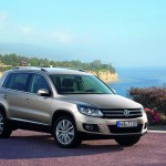 VW Passat and Tiguan (8)