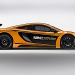 2013 McLaren 12C Can-Am Edition Concept (4)