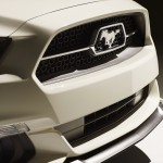 Ford Mustang 50 Year Limited Edition (12)