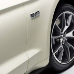 Ford Mustang 50 Year Limited Edition (9)